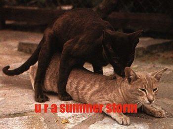 Summerstorm