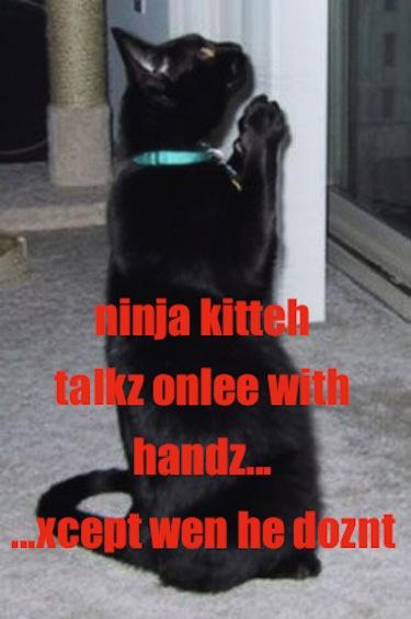 Ninjakitteh