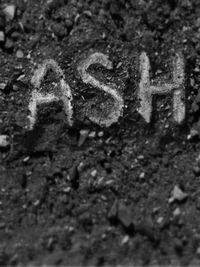 Cover - Ash