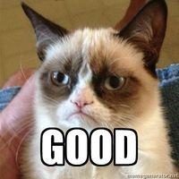 grumpy-cat-good-1