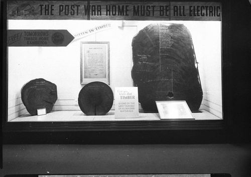 SLNSW_13338_Timber_Homes_Exhibition_notice_reads_The_post_war_home_must_be_all_electric_in_a_city_shop_window